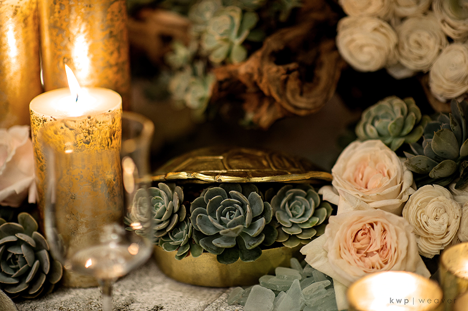 succulents and garden roses